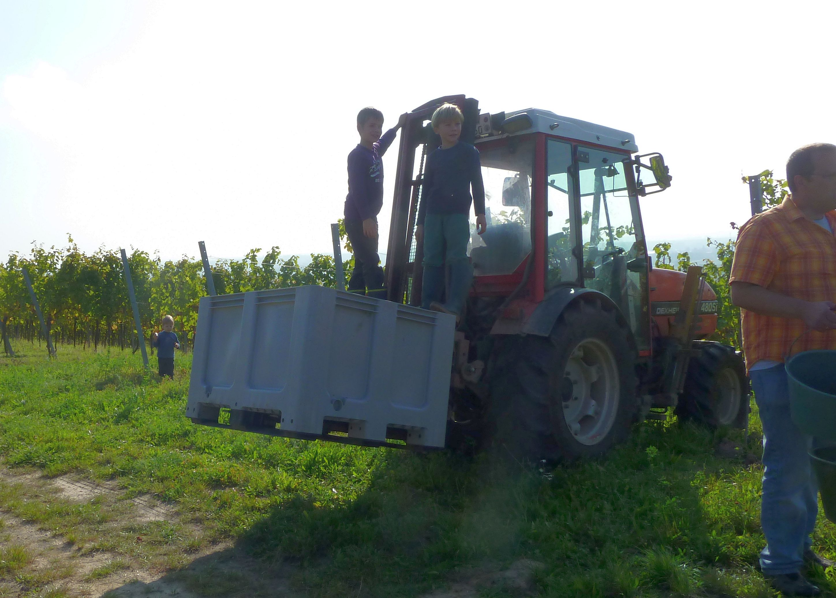 a grape harvest truck