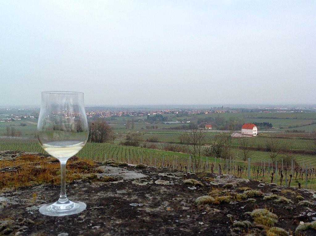2016 wine-tasting 6